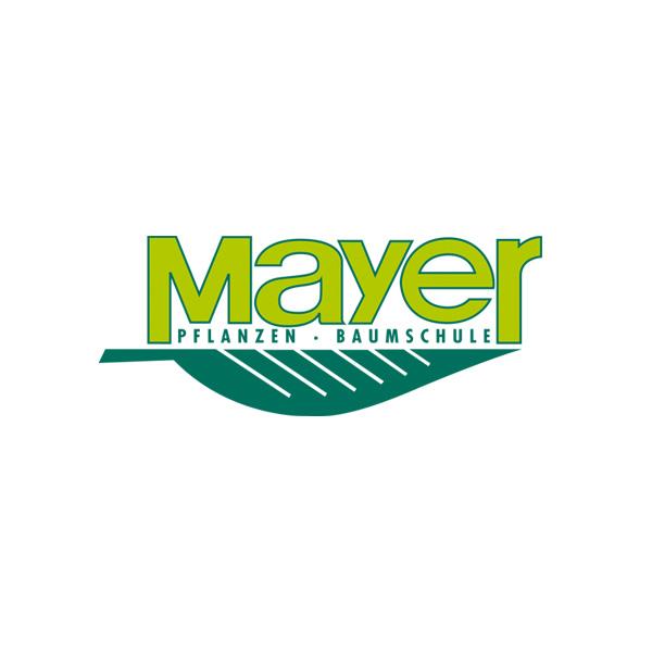 Mayer Baumschule